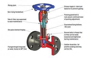 Forged Steel Bellows Seal Globe Valve-2